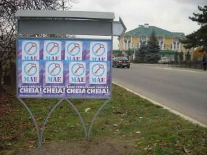 publicitate electorala in sat (17)