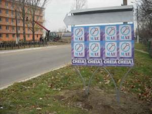 publicitate electorala in sat (18)