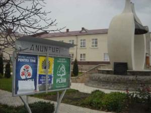 publicitate electorala in sat (21)