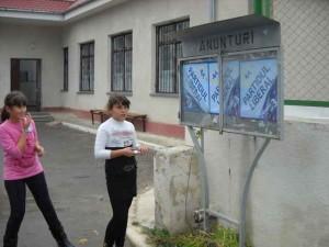 publicitate electorala in sat (22)