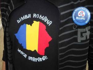 publicitate electorala in sat (23)