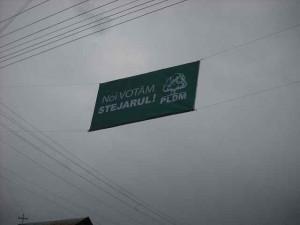 publicitate electorala in sat (27)