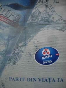 publicitate electorala in sat (3)