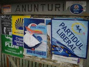 publicitate electorala in sat (30)