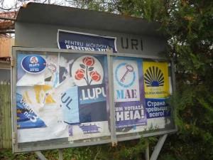publicitate electorala in sat (32)