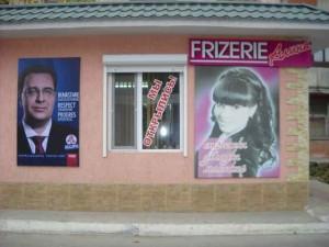 publicitate electorala in sat (9)