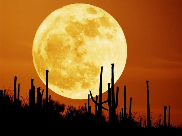 19 martie cea mai mare luna pe cer