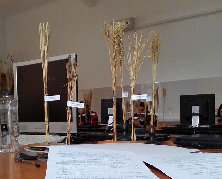 studentie-agronomica-iasi